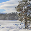 Stock Photo: Snow covered lake
