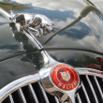 Постер, плакат: Jaguar Emblem