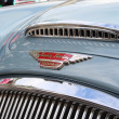 Austin Healey badge — Stock Photo