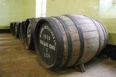 Scottish Whisky barrels — Stock Photo