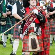 Pipe Band - Stockfoto