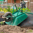 Wheelbarrow on allotment - Stock Photo