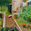 Stock Photo: Garden shed on allotment
