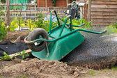 Wheelbarrow on allotment — Stock Photo