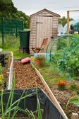Garden shed on allotment — Stock Photo