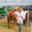 Stock Photo: Nairn Farmers Show