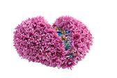 Heart of flowers — Stock Photo