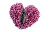 сердце из цветов — Стоковое фото