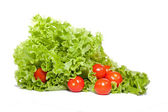 Salad with tomatoes — Stock Photo