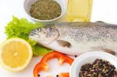 Fresh trout with a lemon — Stockfoto