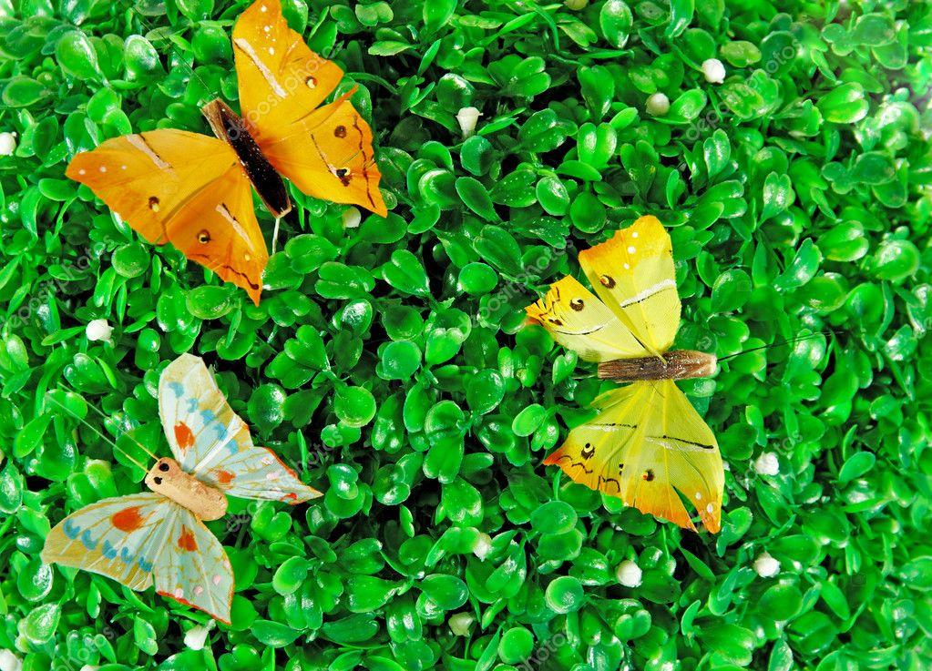 绿色的树叶蝴蝶