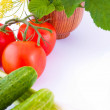 Still-life from a tomato — Stockfoto #11432665