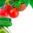 Still-life from a tomato — Stockfoto