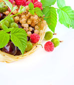 Basket with a raspberry — Stock Photo
