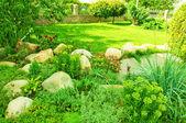 Landskapsplanering i park — Stockfoto
