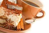蛋糕提拉米苏 — 图库照片