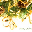 Christmas card. Branch of a fur-tree and fir cones on a white background -  