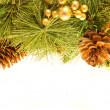Christmas card. Branch of a fur-tree and fir cones on a white background — Stock Photo