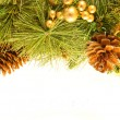 Stock Photo: Christmas card. Branch of a fur-tree and fir cones on a white background