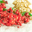 Stock Photo: Christmas branch of berries with a gold fur-tree against snow