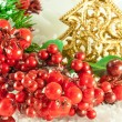 Christmas branch of berries with a gold fur-tree against snow — Stock Photo #11459446