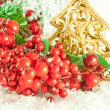 Christmas branch of berries with a gold fur-tree against snow — Stock Photo