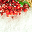 Stock Photo: Christmas branch of berries with gold fur-tree against snow