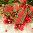 Christmas red tape and branch of berries and fur-tree - Stockfoto