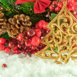 Christmas branch of berries with a gold fur-tree against snow — Stock Photo #11459621
