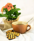 Tasty fruitcake and jug with milk, natural flowers — Stock Photo
