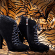 Stock Photo: Boots from suede against a skin of a tiger