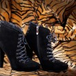 Boots from suede against a skin of a tiger — Stock Photo