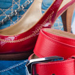 Red belt and shoes, a jeans bag and a skirt — Stock Photo #11558892