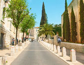 Ancient street in Nazareth, Israel. Date palm trees — Stock Photo