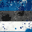 Grunge Estonia flag with stains — ストック写真