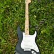 Guitar on green grass yard - Stock Photo