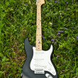 Guitar on green grass yard — Stock Photo