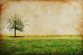 Vintage background with tree — Stock Photo