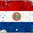Grunge Paraguay flag with stains — Stockfoto #11967880