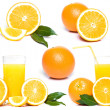 Fresh orange with juice collection - Stock Photo