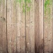 Old painted wooden fence — Stock Photo #11387829