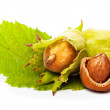 Hazelnut with green leaf isolated on white - Stock Photo