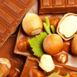 Hazelnut chocolate and many hazelnuts - Stock Photo