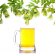 Beer mug with hop border isolated on white — Stock Photo