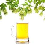 Beer mug with hop border isolated on white — Stock Photo