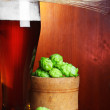 Beer with hop and wheat still-life — Stock Photo #11388794