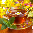 Herbal tea — Stock Photo #11389316