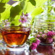 Herbal tea with clover and chamomile - Stock Photo