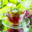 Herbal tea — Stock Photo #11389328