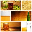 Beautiful beer collage - Stock Photo
